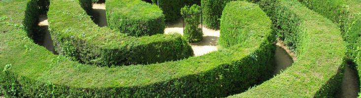 Labyrinth aus Hecken